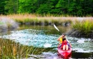 AP Kayak